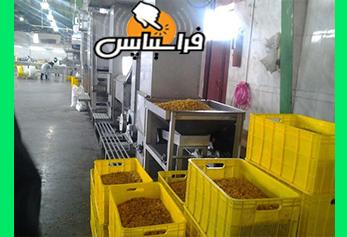 لیست کارخانه های کشمش قزوین