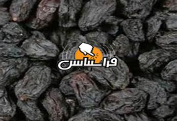 فروش کشمش مویز کارتونی