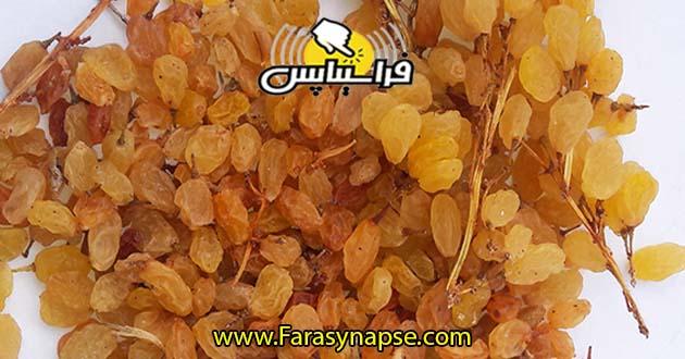 قیمت خرید کشمش فله ای