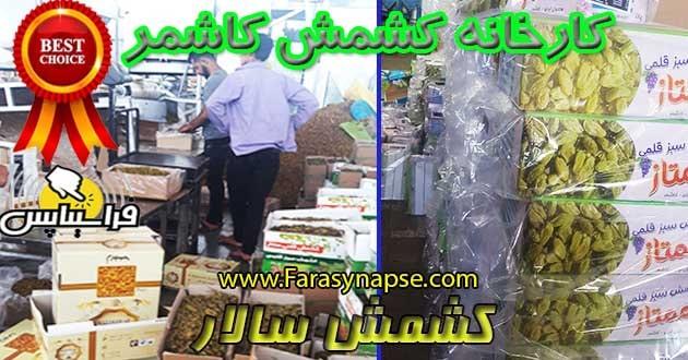 خرید کشمش سبز صادراتی