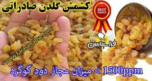 صادرات کشمش طلایی به عمان